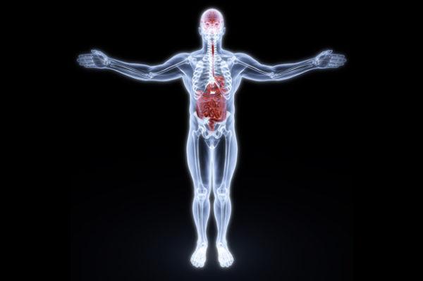 Neuro-gastroenterologia