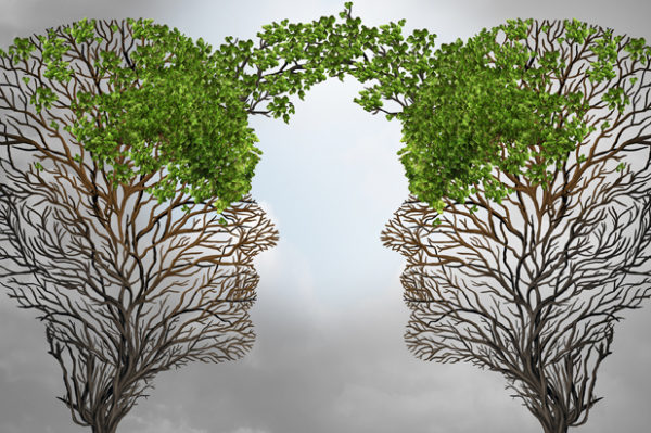 Psicoteràpia Integrativa